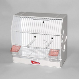 Plastic Competition-Exhibition Cage
